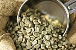 მწვანე ყავა